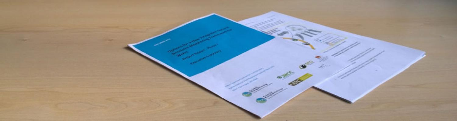 Options for the new integrated Natural Resource Monitoring Framework for Wales